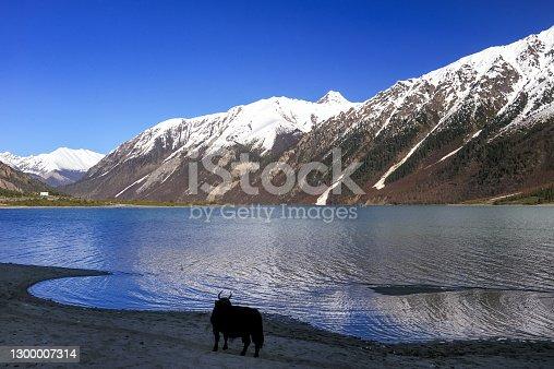 Tibet, China.