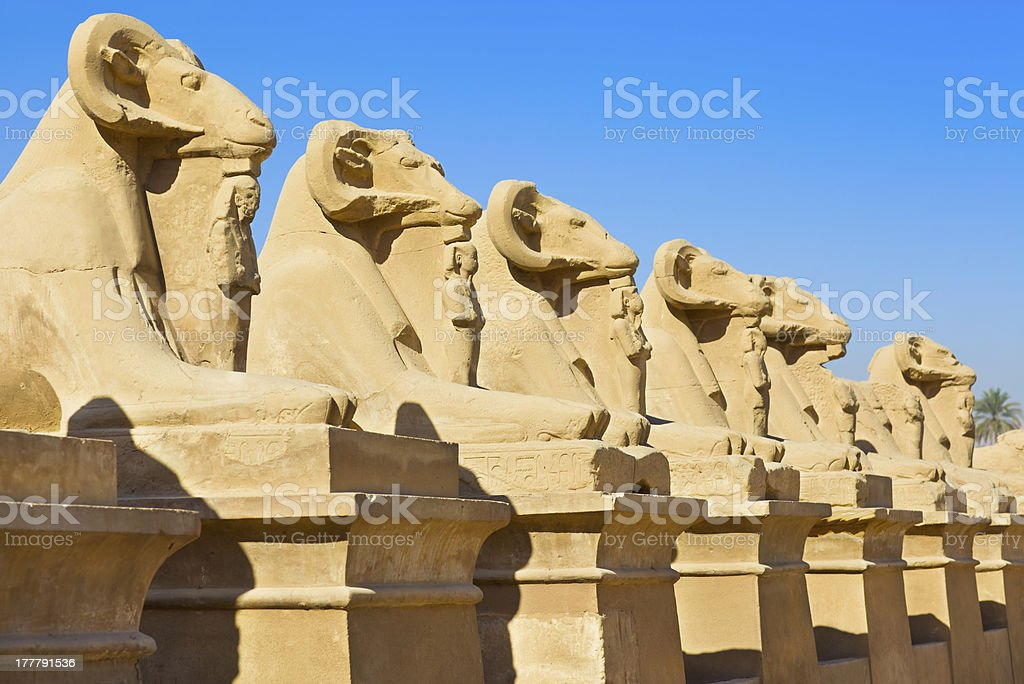 Ram Headed Sphinx stock photo