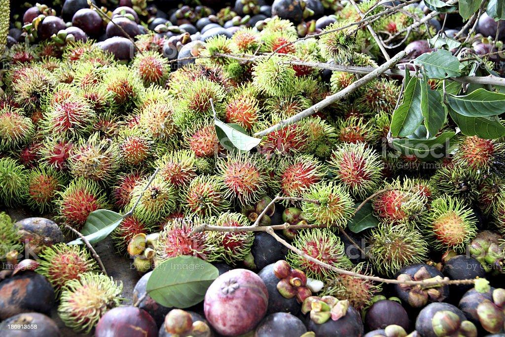 Rambutan and other fruits. royalty-free stock photo