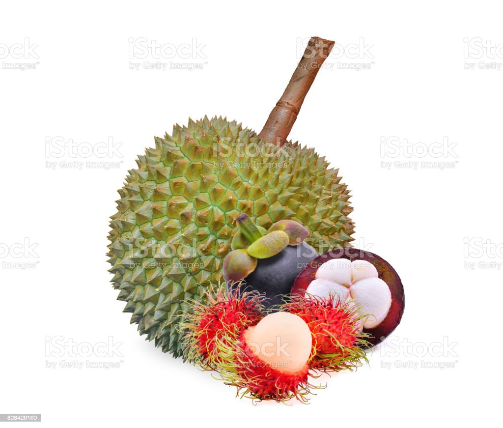 rambutan, mangosteen and durian, tropical fruit isolated on white background stock photo
