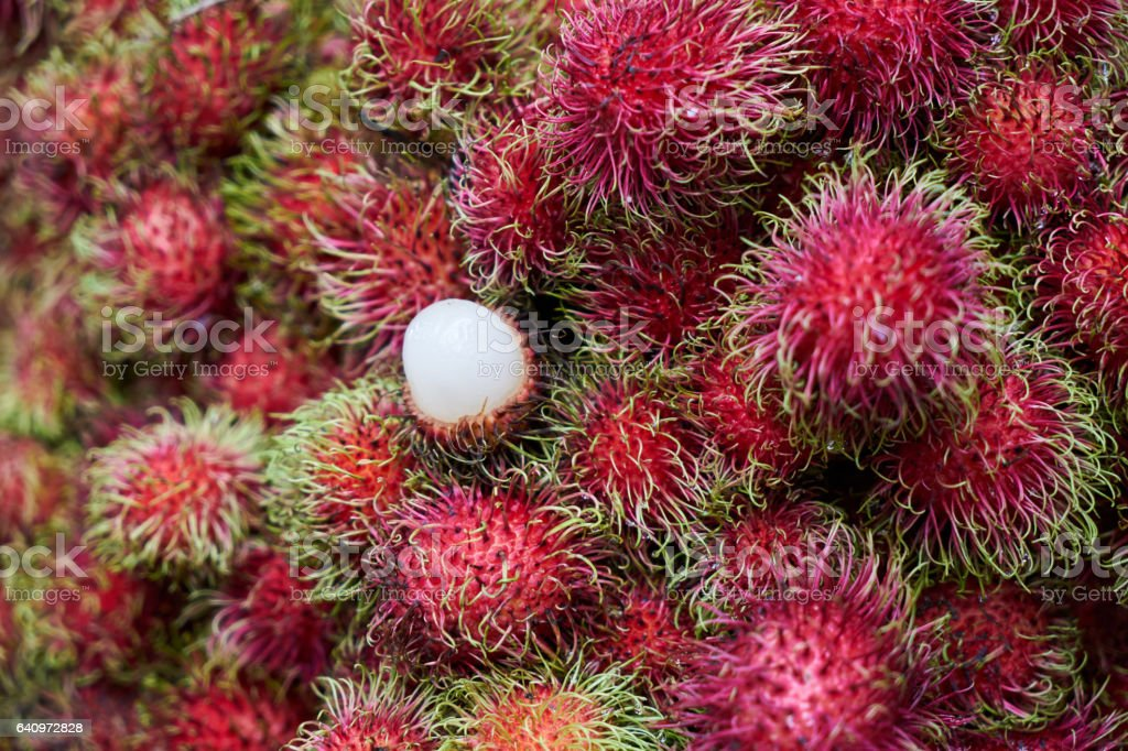 Rambutan stock photo
