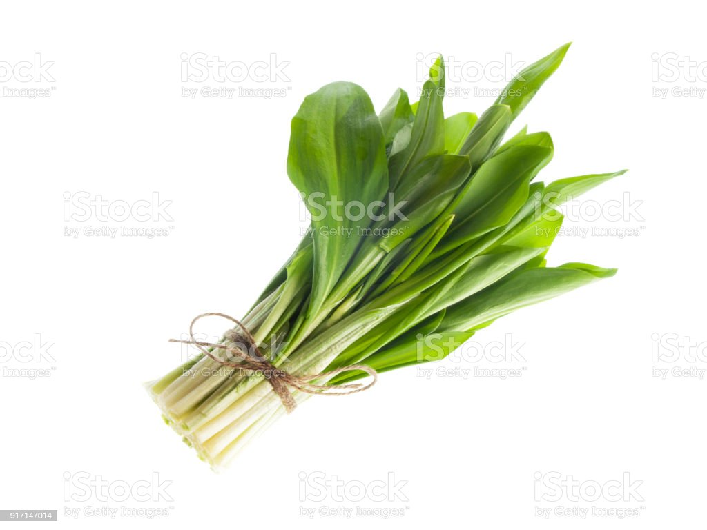 Ramson bunch vegetable on white background stock photo