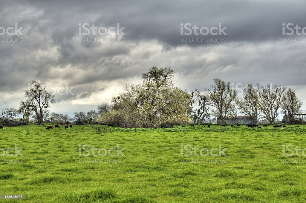 Ranch in a Storm (HDR) stock photo