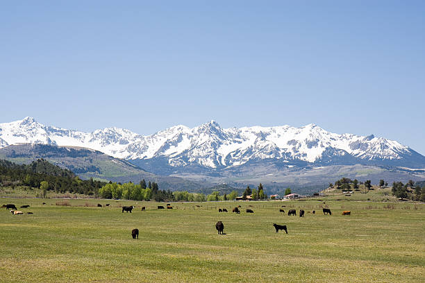 Ranch in the Rocky Mountains stock photo