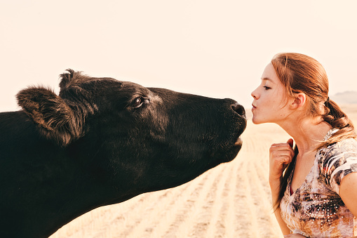 A young woman rancher and Black Angus cow reaching their faces toward each other. The woman has her lips puckered up and ready for a kiss. High resolution color photograph with horizontal composition and copy space at top of image.