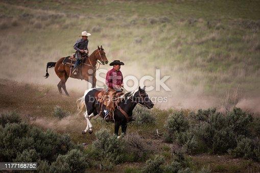 Ranchers on horses in Utah, USA