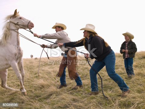 Ranchers roping horse to check health in Montana
