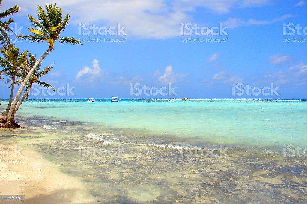 Rangiroa blue lagoon motu, French Polynesia, Tahiti royalty-free stock photo