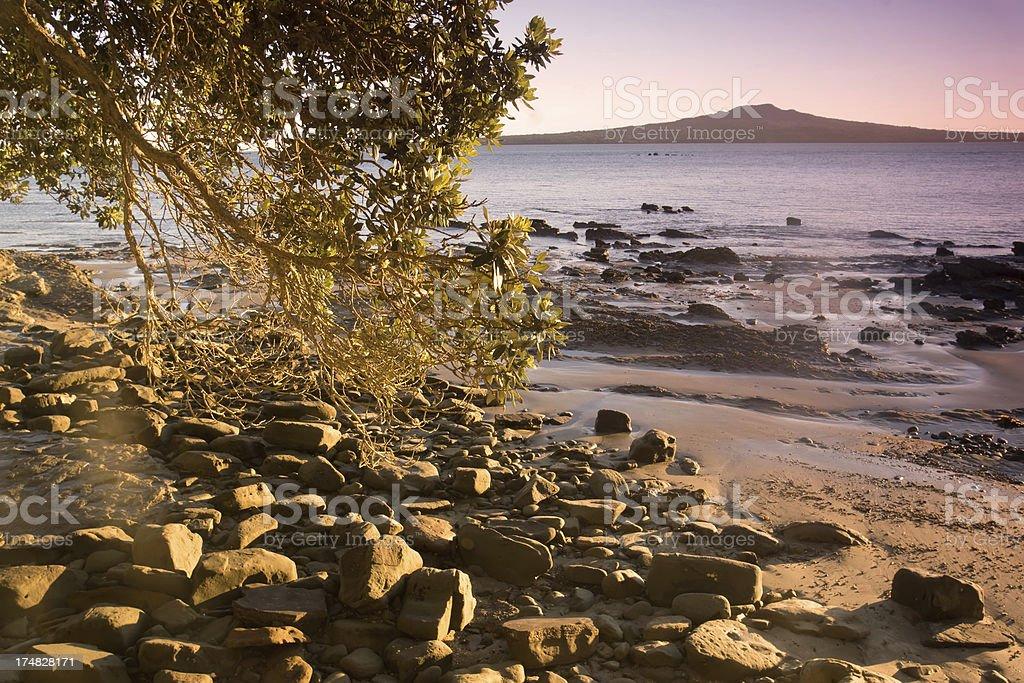 Rangitoto Island royalty-free stock photo