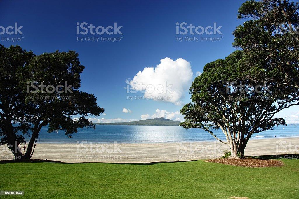 Rangitoto through the trees stock photo