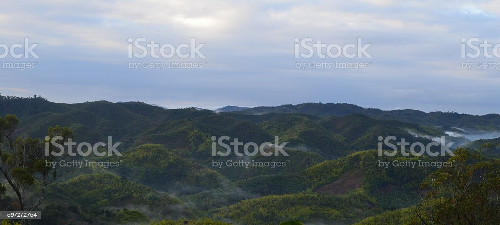 Parc national de Ranomafana royalty-free stock photo