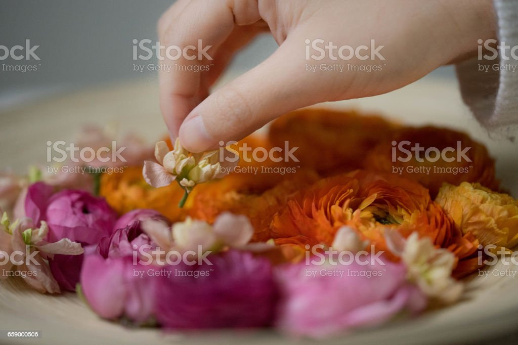 Ranunculales Flower Arrangement royalty-free stock photo