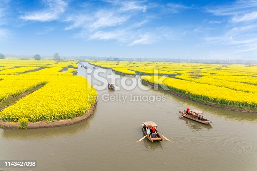 China's Jiangsu, rural rapeseed farmland, rape blossoms. The boat in the river transports tourists