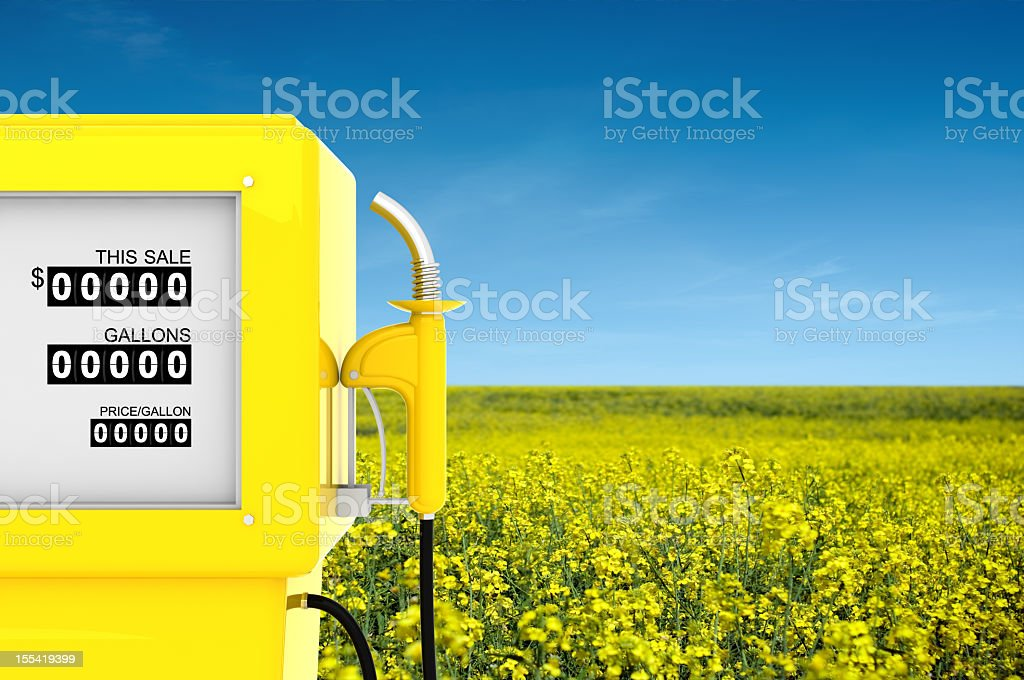 Rapeseed Biofuel Concept stock photo