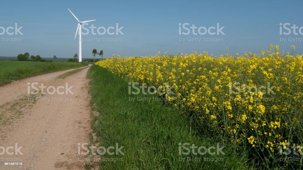 Raps-Feld einen Weg am Ende einer Windkraftanlage – Foto