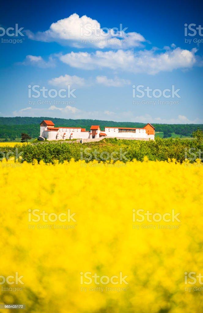 Rapeseed field, Feldioara fortress, Romania zbiór zdjęć royalty-free