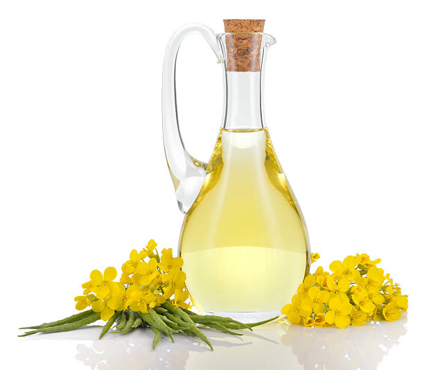 Rapeseed oil and flowers isolated over white. Rapeseed oil in decanter oilseed rape flowers and seeds isolated on white background. Canola oil. oilseed rape stock pictures, royalty-free photos & images
