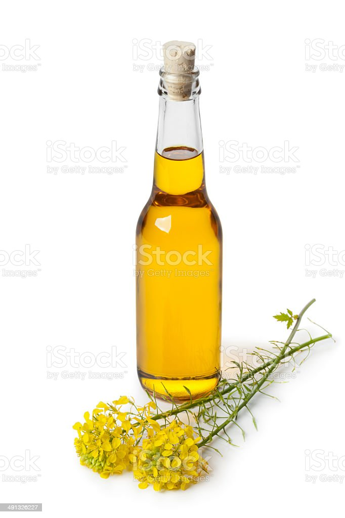 Rapeseed oil in a bottle stock photo