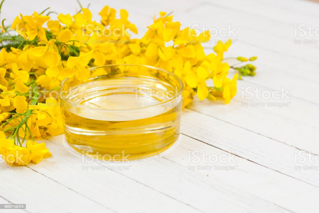 Rapeseed oil stock photo