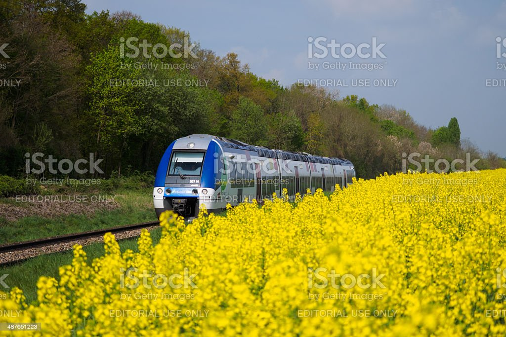 Colza train stock photo