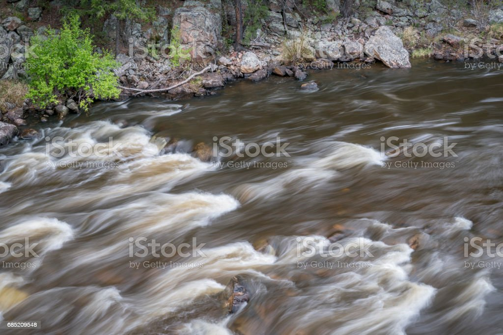 rapid on the Cache la Poudre River stock photo