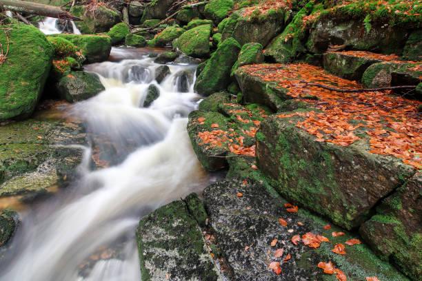 Rapids on Jedlova Creek, Jizera Mountains,  Czech Republic stock photo