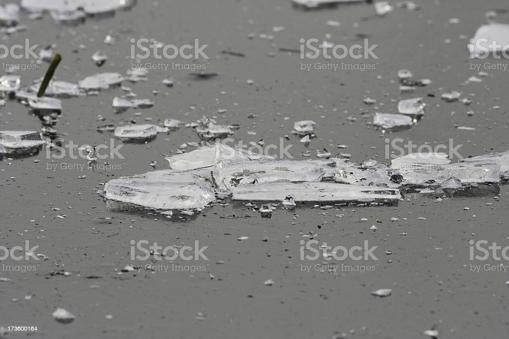 Ice shards scattered over frozen solid pond surface royalty-free stock photo