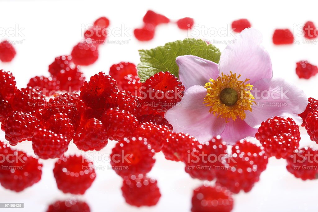 Raspberries and blossoms royalty-free stock photo