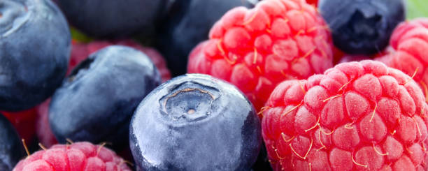 Raspberries and blueberries as background banners stock photo