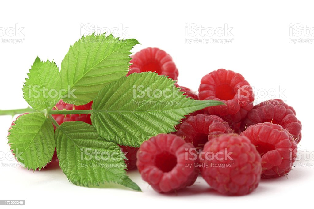 Raspberries and leaves royalty-free stock photo