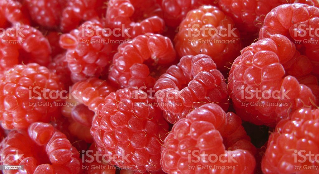 Raspberries dreams royalty-free stock photo