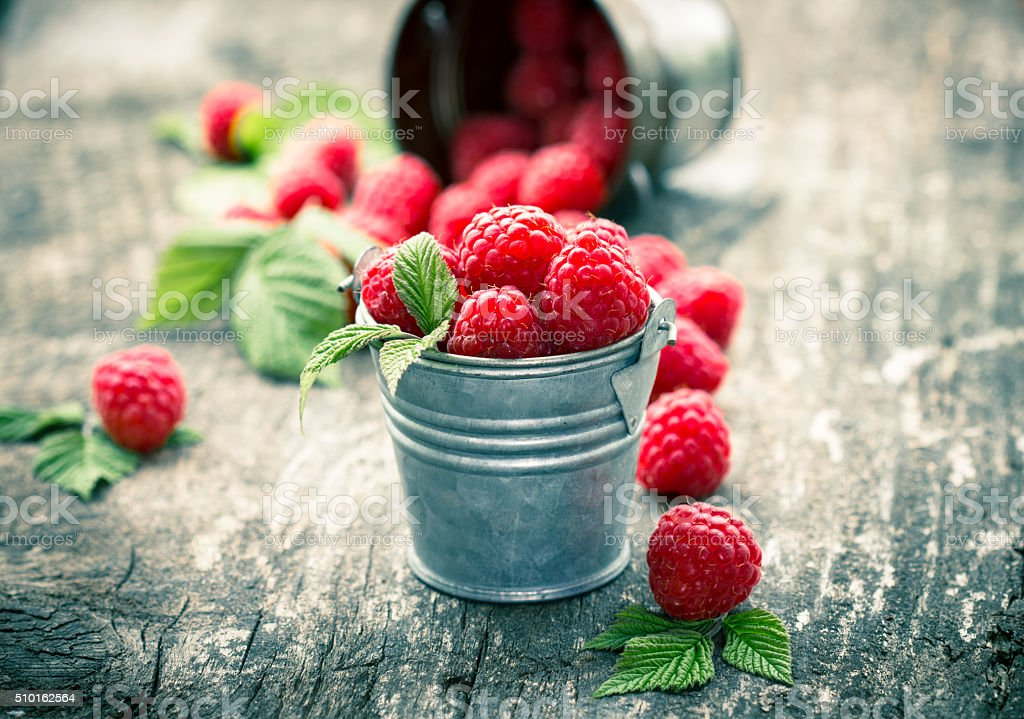 Raspberries in the small bucket stock photo