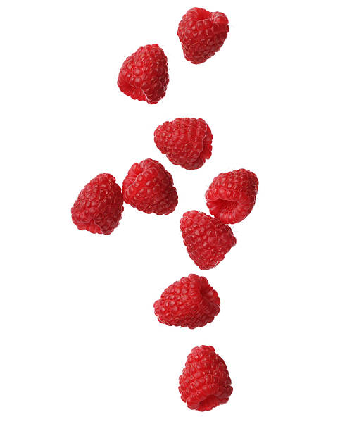 raspberries isolated on white background, close-up - hallon bildbanksfoton och bilder
