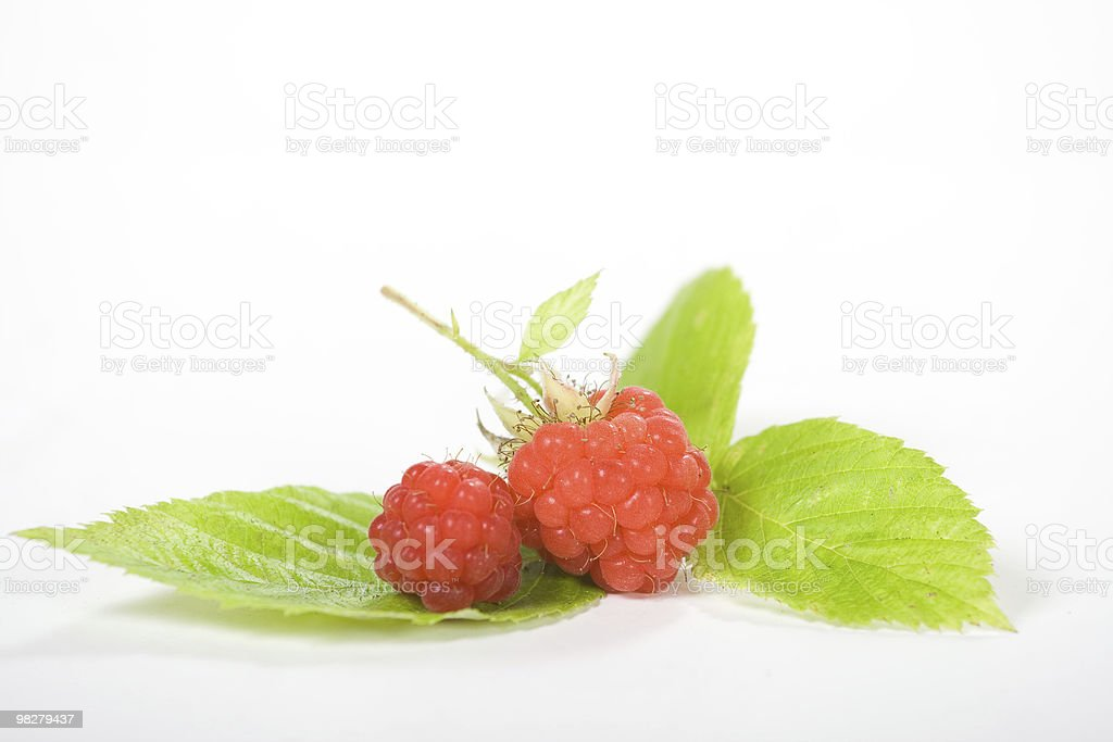 Raspberries royalty-free stock photo