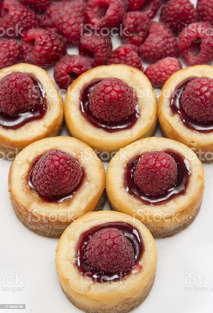 raspberry mini cheesecakes royalty-free stock photo