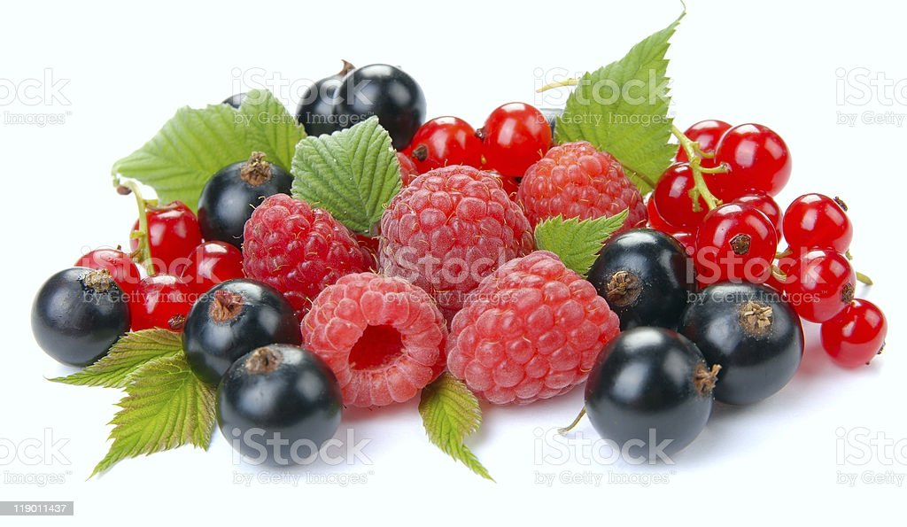 raspberry red and black currant royalty-free stock photo