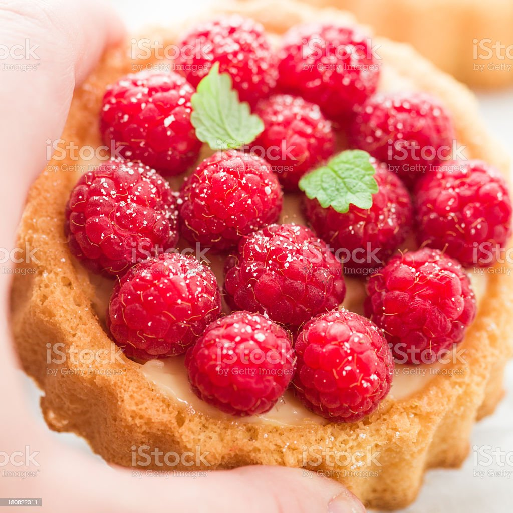 Raspberry Tart royalty-free stock photo