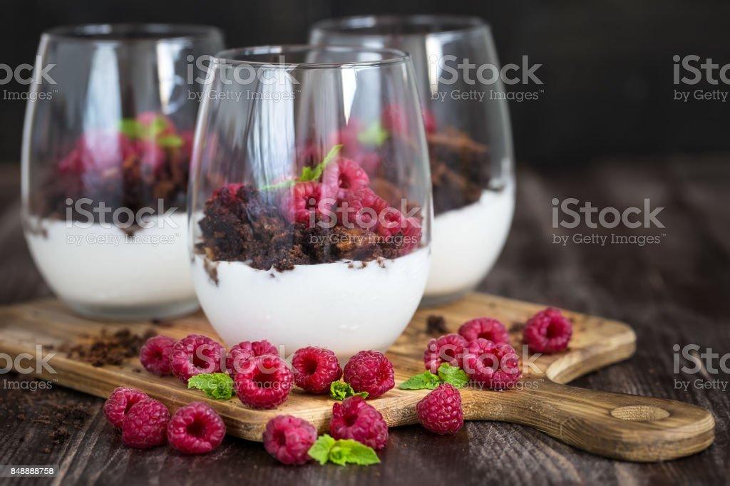 Raspberry trifle stock photo