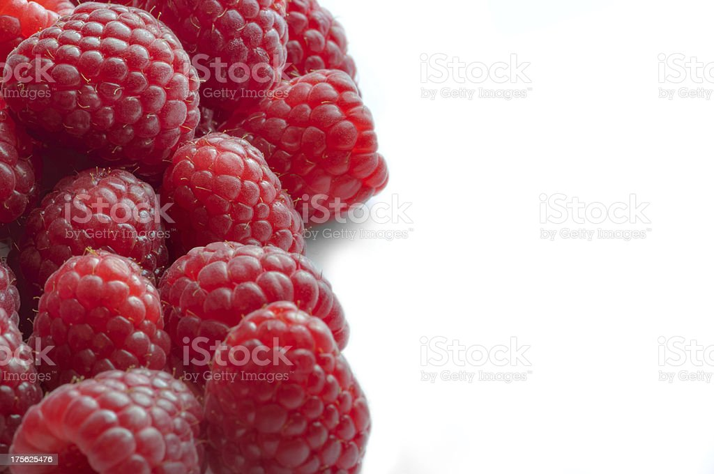 Raspberry - White Background with half side negative space royalty-free stock photo