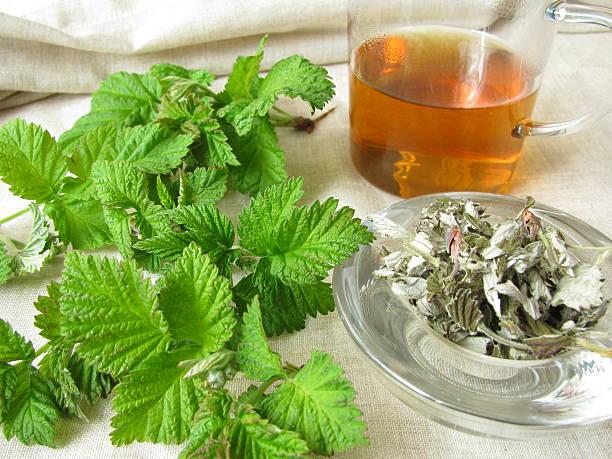 Raspberry-leaves tea - Himbeerblättertee stock photo