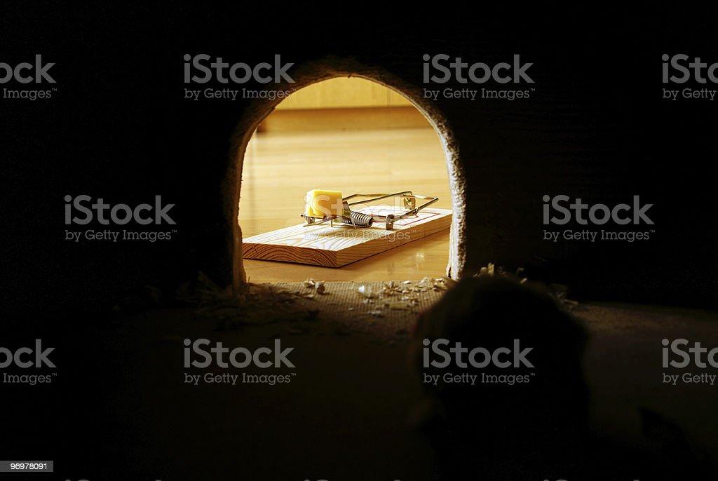 rat hole stock photo