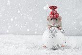 ガラスボールの装飾を保持する冬の帽子のネズミ