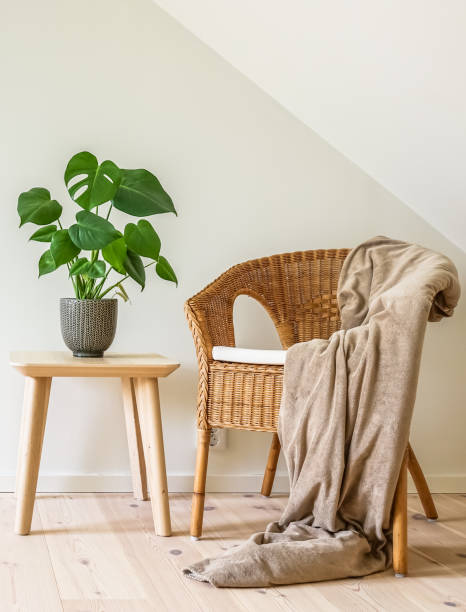 Rattan armchair in simple living room interior Rattan armchair with a blanket and a wooden table with a potted plant, fruit salad tree (Monstera deliciosa). Empty white wall in simple living room interior. wicker stock pictures, royalty-free photos & images