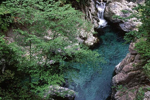 峡谷の早期夏 ストックフォト