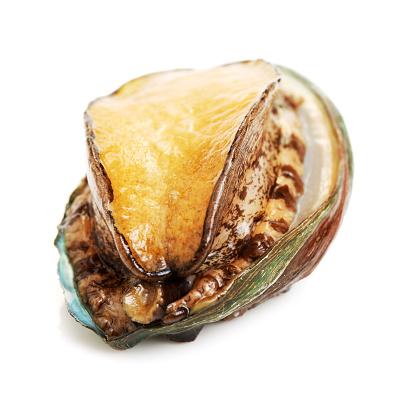 istock Raw abalones on white background 686175212