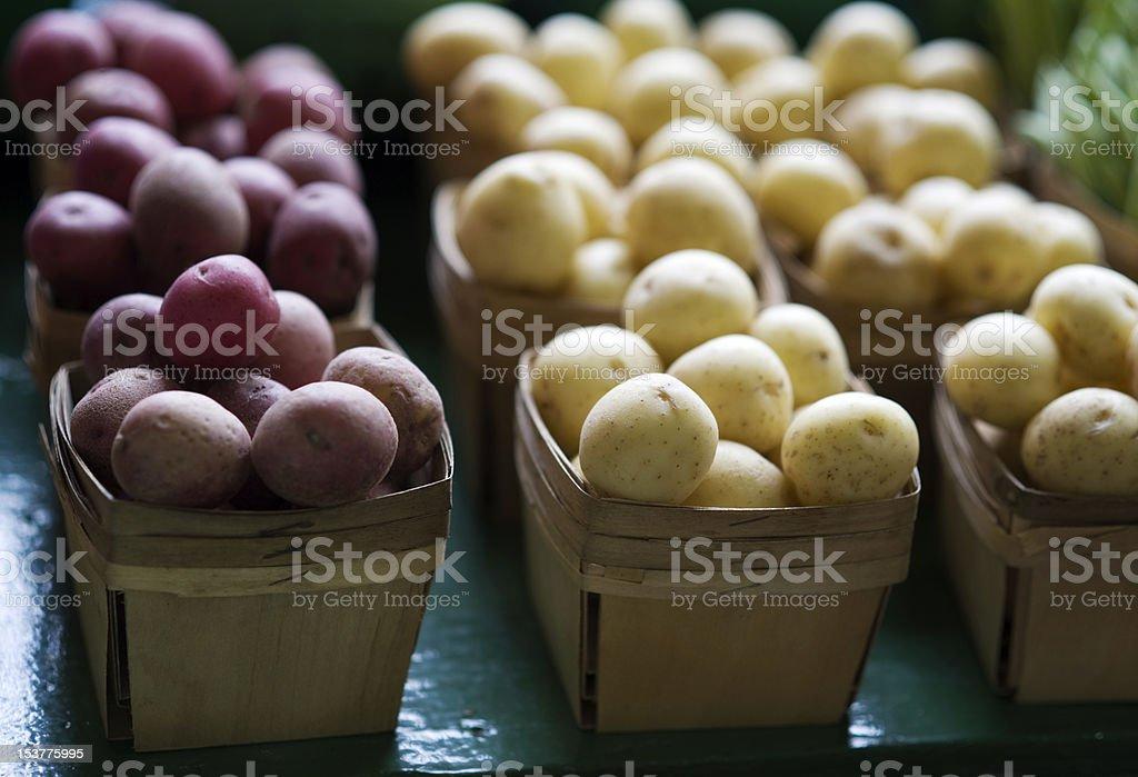 Raw Baby Potatoes royalty-free stock photo