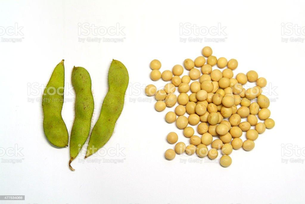 Materia prima y de caseína de soja estaciones - foto de stock
