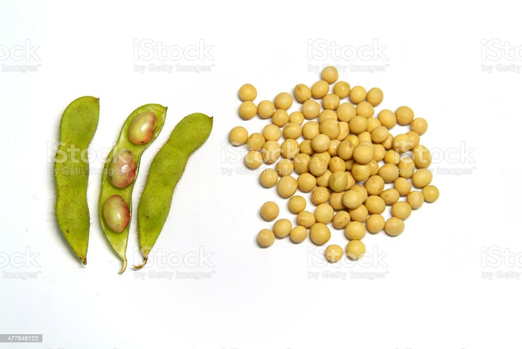 Raw bean pods and soybeans stock photo
