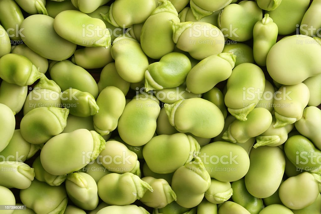 Raw broad beans royalty-free stock photo