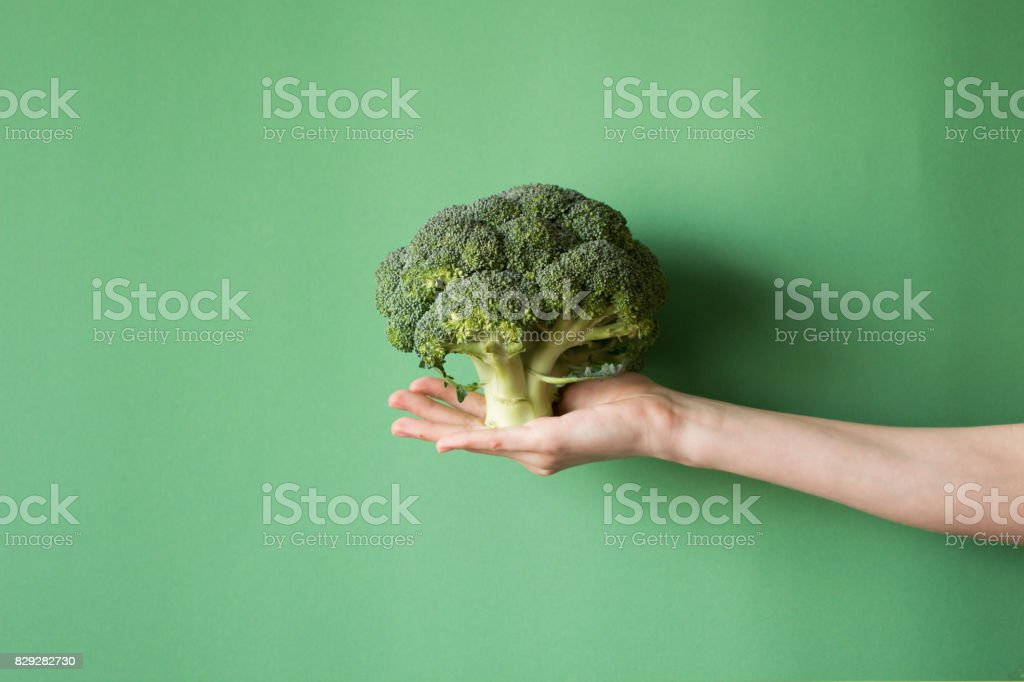 Raw broccoli in hand. Vegeterian food or diet concept. stock photo